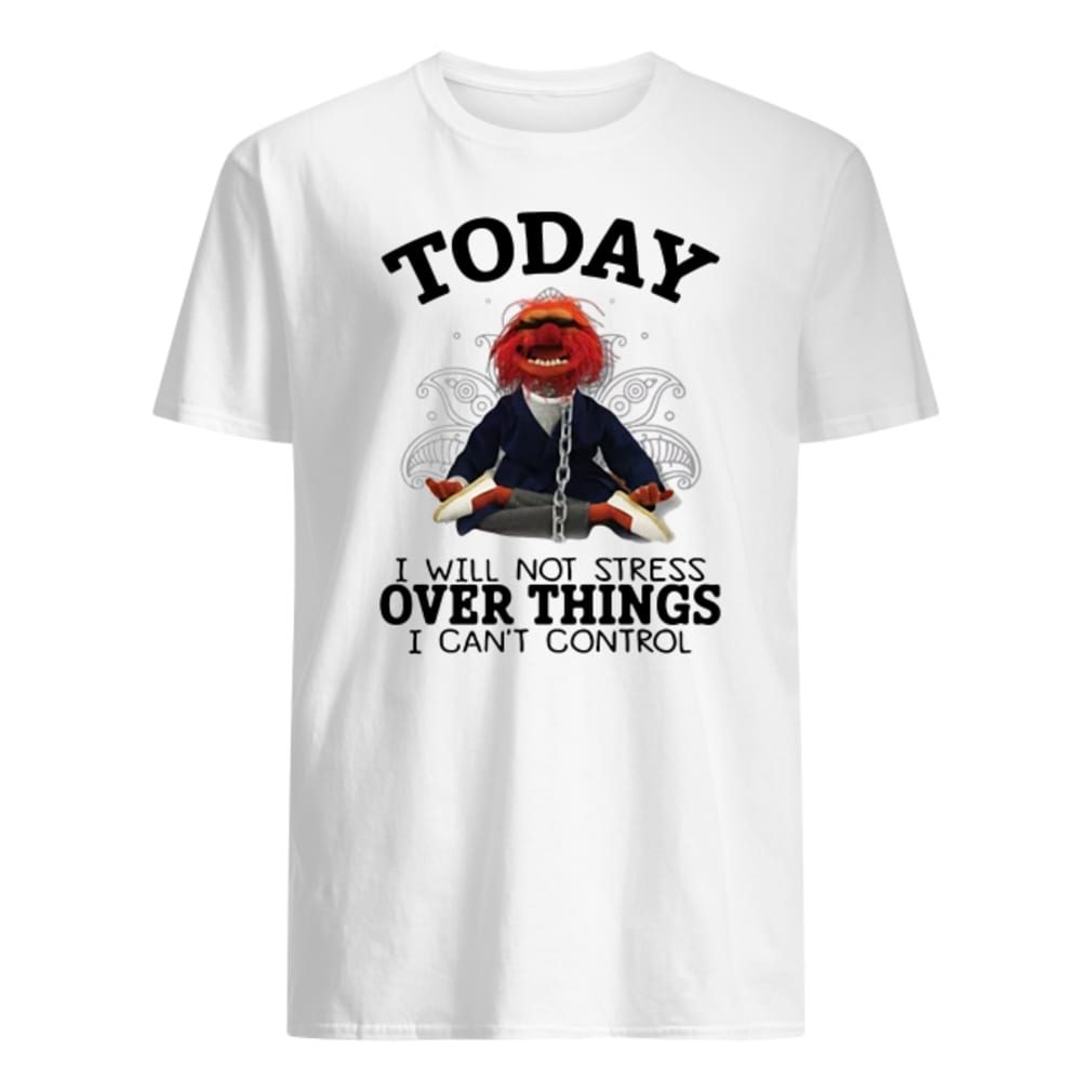 Muppet today i will not stress over things i can't control shirt