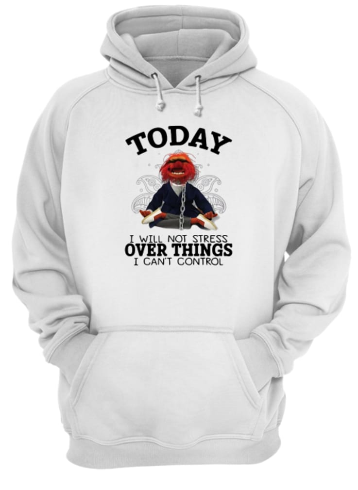 Muppet today i will not stress over things i can't control shirt hoodie