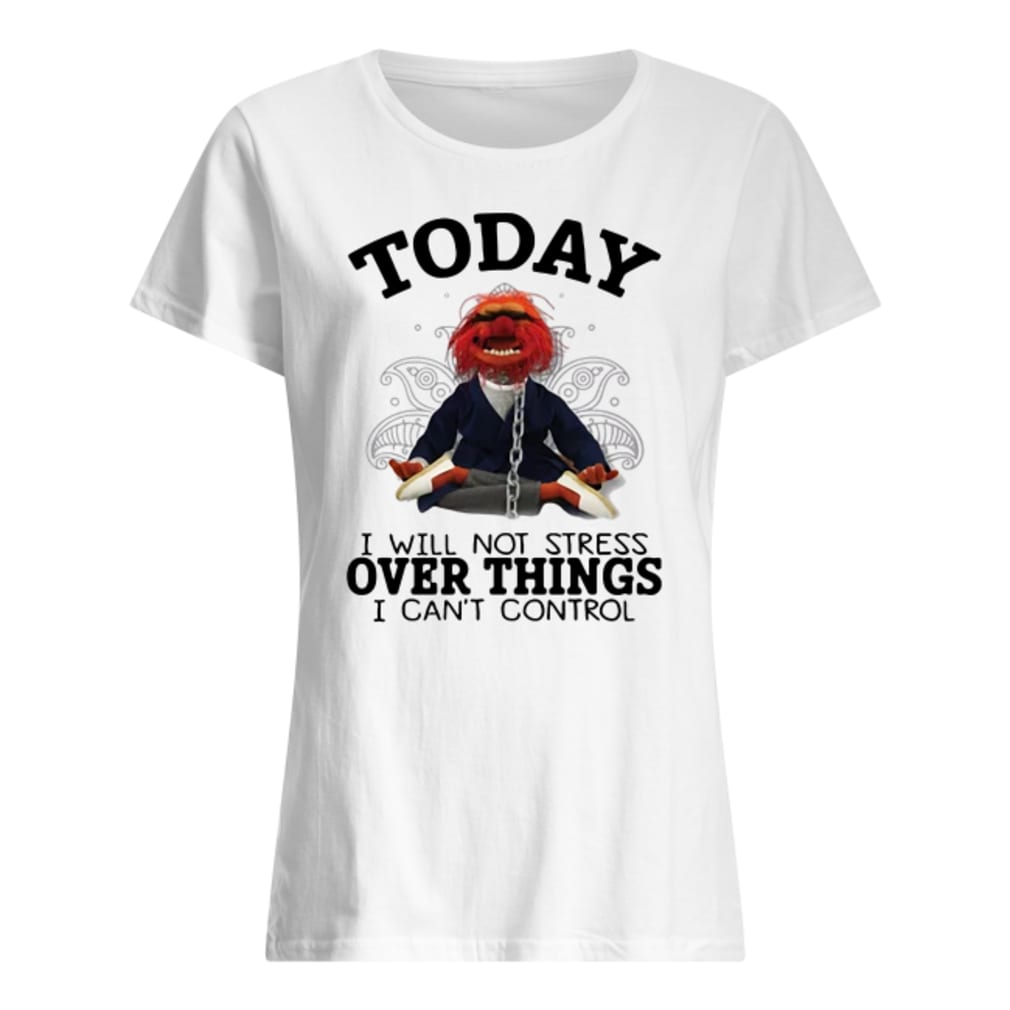 Muppet today i will not stress over things i can't control shirt ladies tee