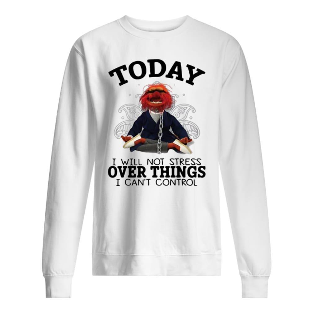 Muppet today i will not stress over things i can't control shirt sweater